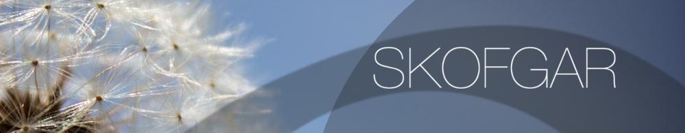 Skofgar's Blog